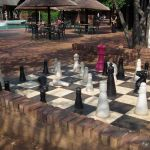 what - surely not chess pieces