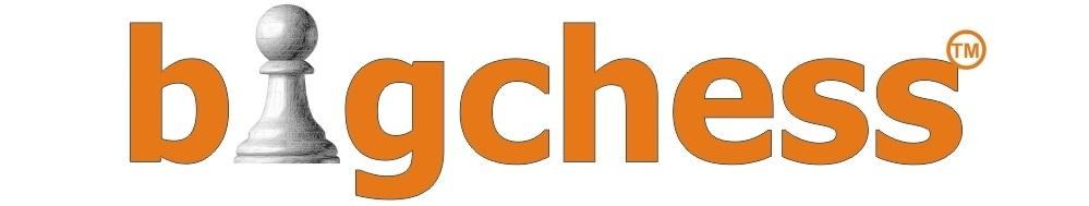 BigChess, site logo.