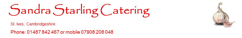 sandrastarlingcatering.co.uk, site logo.