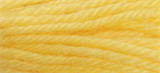 Anchor Tapestry Wool - 10m - Col. 8114