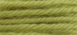 Anchor Tapestry Wool - 10m - Col. 9162