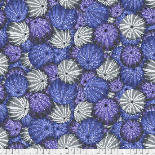 Kaffe Fassett Collective - Philip Jacobs - Sea Urchins - PWPJ100 GREY