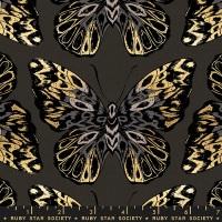 Moda - Tiger Fly (Canvas) - Queen - RS2016 17LM (Noir)