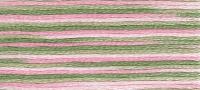 DMC - Coloris Stranded Cotton - Col. 4500