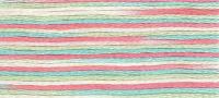 DMC - Coloris Stranded Cotton - Col. 4501