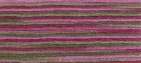 DMC - Coloris Stranded Cotton - Col. 4504