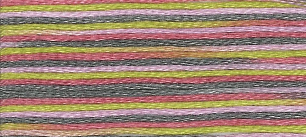 DMC - Coloris Stranded Cotton - Col. 4509