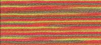 DMC - Coloris Stranded Cotton - Col. 4510