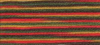 DMC - Coloris Stranded Cotton - Col. 4511