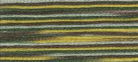 DMC - Coloris Stranded Cotton - Col. 4521