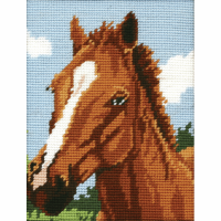 Tapestry Kit - Horse (Anchor)