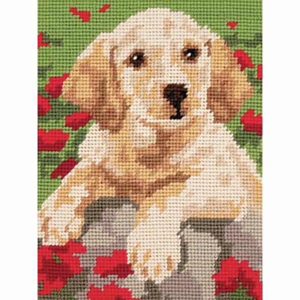 Tapestry Kit - Labrador Puppy (Anchor)