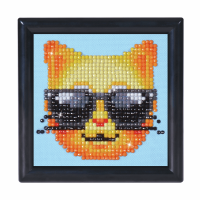 Diamond Painting kit with frame - Kool Kat (Diamond Dotz)