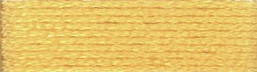 DMC - Stranded Cotton - Col. 3855