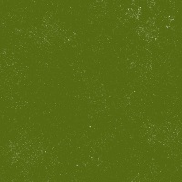Giucy Giuce - Spectrastatic - A-9248-G5 (Seaweed) - *NEW COLOUR*