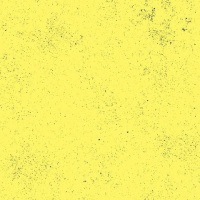 End of Bolt (last fat quarter) - Giucy Giuce - Spectrastatic - A-9248-Y1 (Husk)