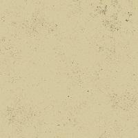 Last Fat Quarter - Giucy Giuce - Spectrastatic - A-9248-N1 (Sandstone)