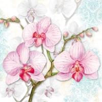 Orchids Blue napkin. 33 cm x 33 cm.