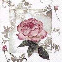 Enchanting Rose, Vintage Rose napkin. 25 cm x 25 cm