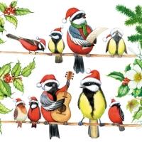 Bird Orchestra napkin. 33 cm x 33 cm.
