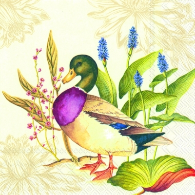 Splendid Duck Napkin. 25 cm x 25 cm.