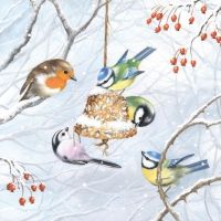 Beautiful Winter Birds napkin - 25 x 25 cm