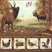 Wildlife - 211409