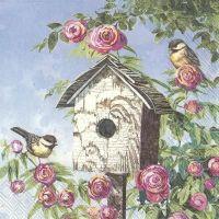 Lovely Bird House - C858800