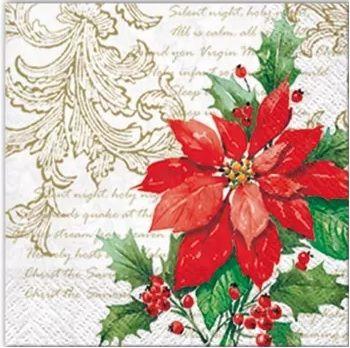 Poinsettia - SDC072800