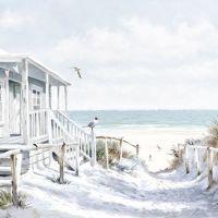 Beach Cabin - 13313915