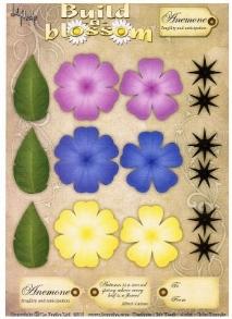 La Pashe - Build a Blooms - Anemone