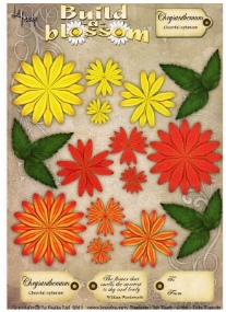 La Pashe - Build a Blooms - Chrysanthemum