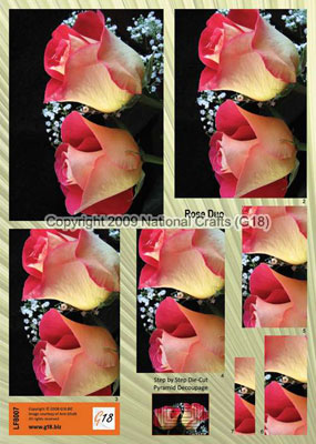 LF8007- G18 Step by Step Die Cut Rose Duo