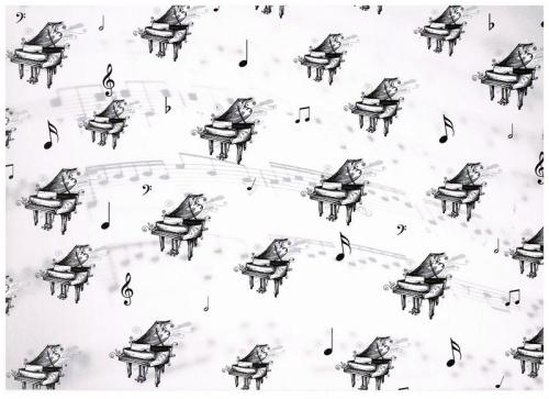 Musical Black & White 300 gsm card. Piiano. (CRD8080)