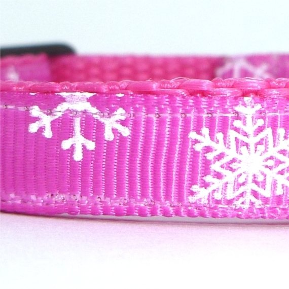 Snowflake pink closeup