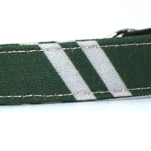 wizard slytherin collar closeup