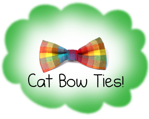 OMG! Bow ties for your cat!