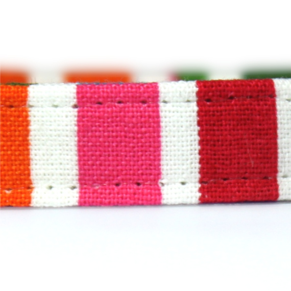 Rainbow stripe cat collar