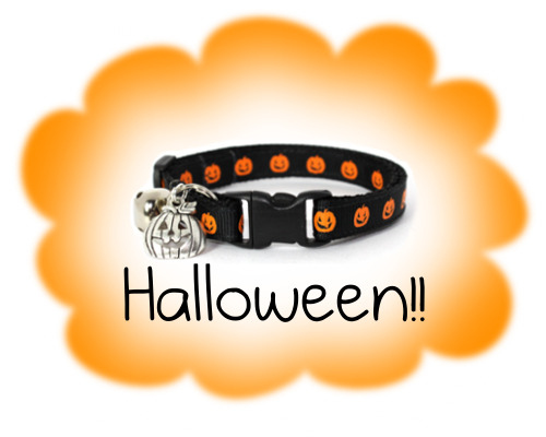 Halloween cat collars!