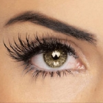Lash and Brow Tint