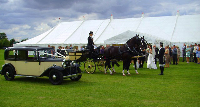 Wedding -Car-Horses