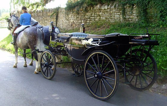 Wedding carriages for Chaise carriage