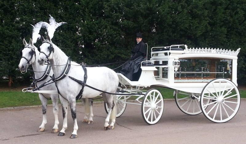 Funerals White horses