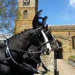 Funeral Black horses church