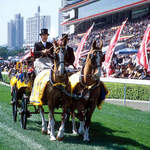 Other-Events---Hong-Kong---Races