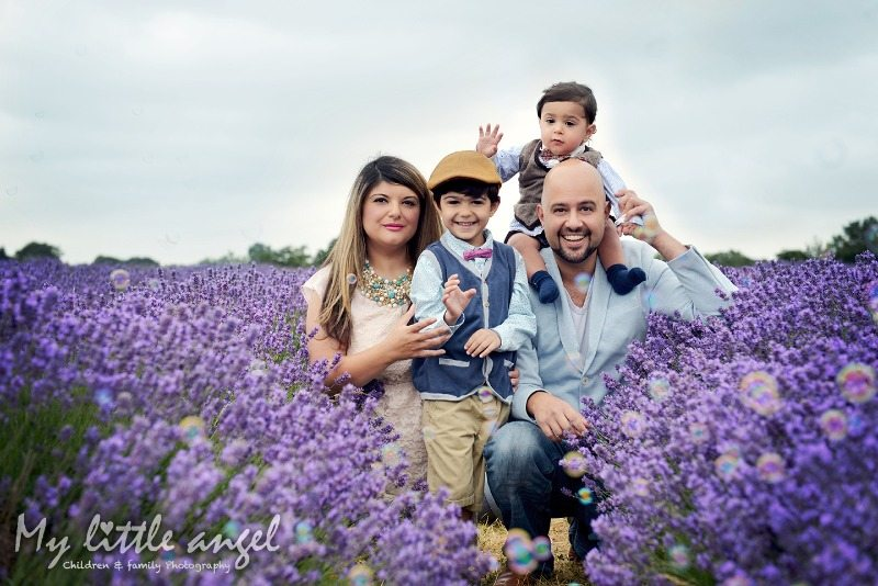 mayfield lavender banstead_zz01