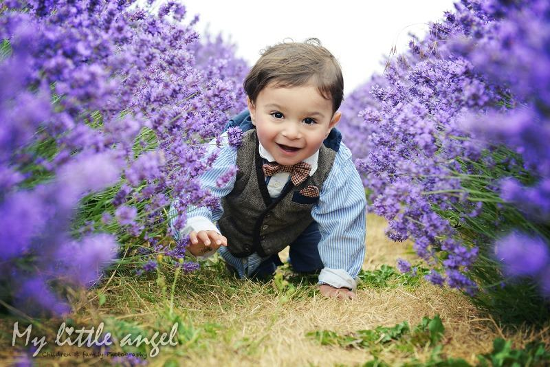 mayfield lavender banstead_zz05