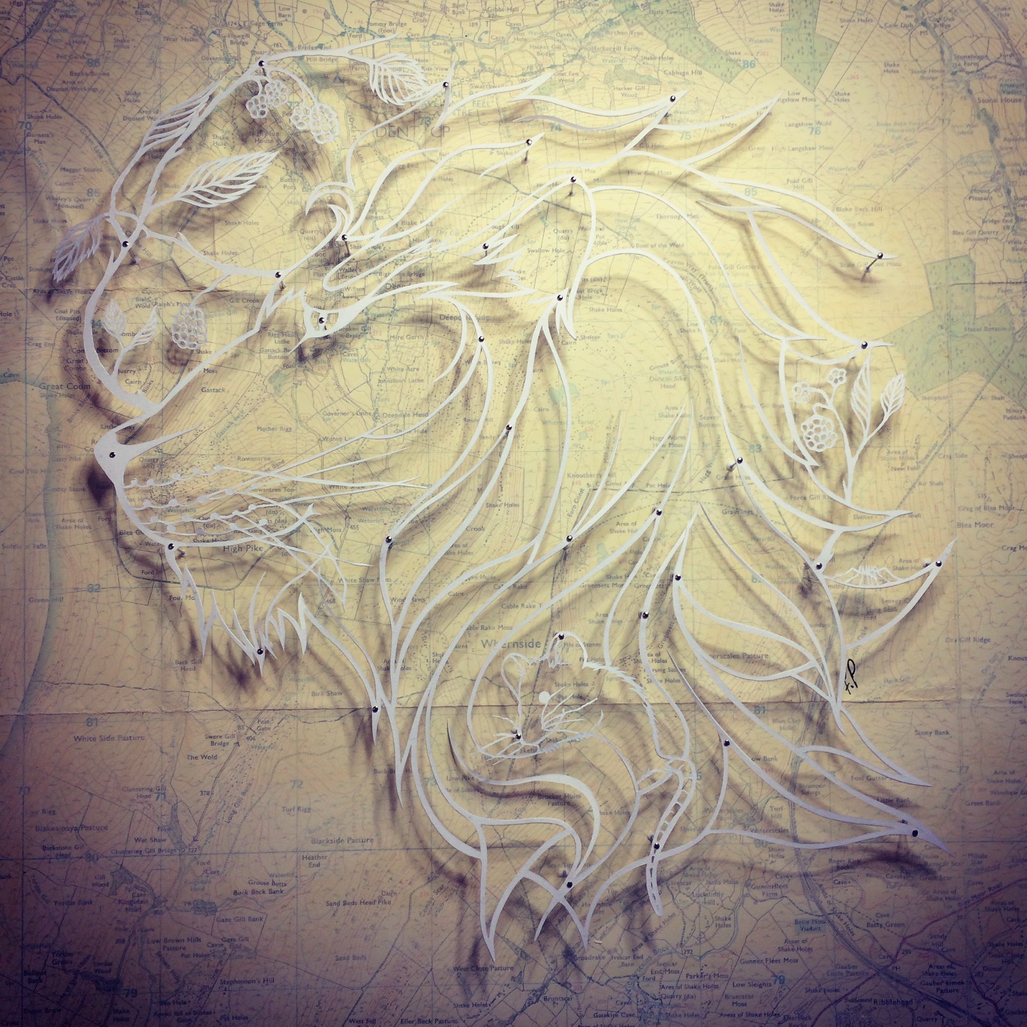 Pinned Papercut by Frances Payne