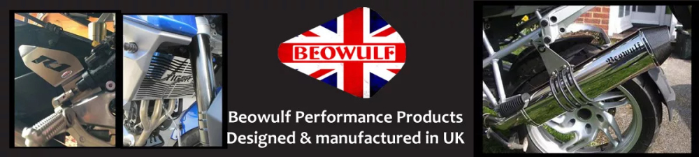 beowulf banner