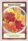 autumn_sm